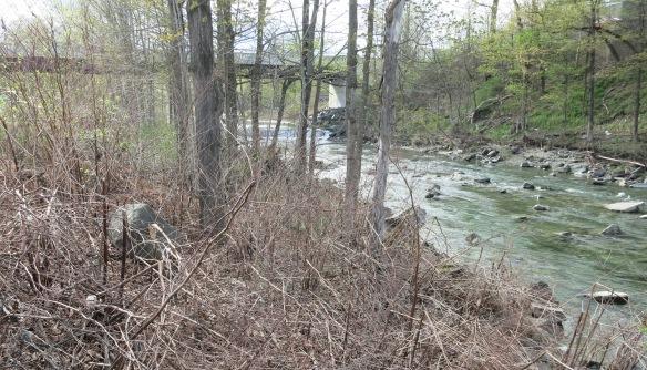 Randolph River Walk, Restoration Project